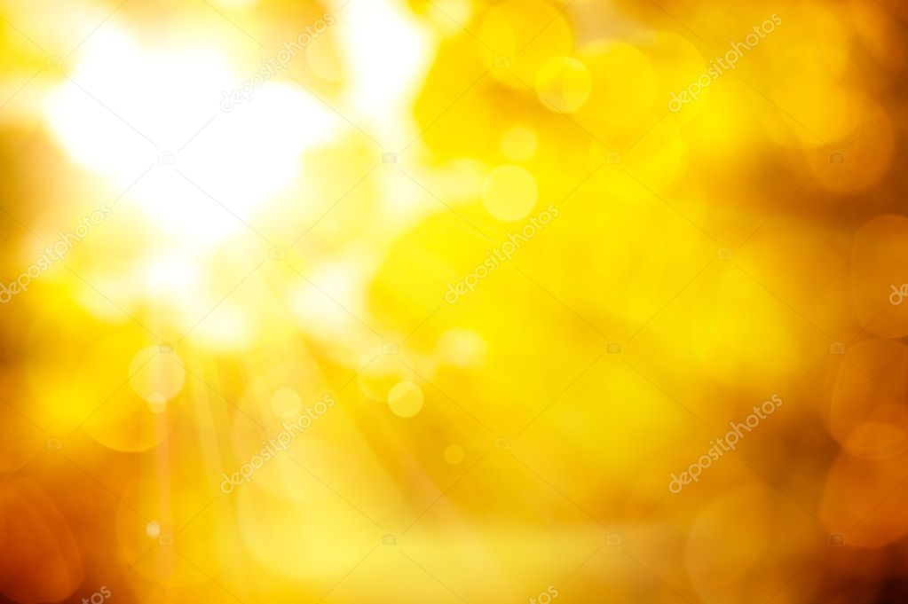 The sun's rays pass through the orange leaves of autumn trees  Stock Photo #6788156