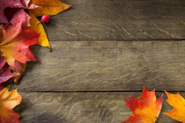 Yellow autumn leaves on background old wood