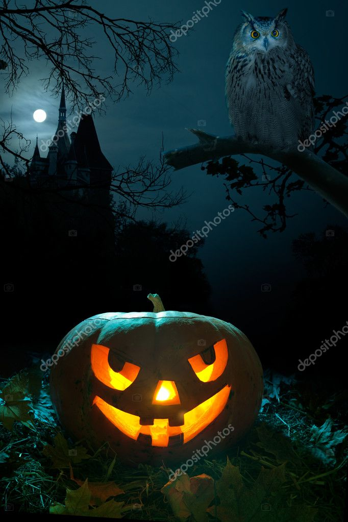 Scary pumpkin, Owl and the castle on Halloween nigh — Stock Photo #6963359