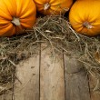 Art orange pumpkins on wooden background — Stockfoto