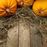 Art orange pumpkins on wooden background — Stock Photo