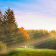 Sunrise in the autumn park — Stock Photo