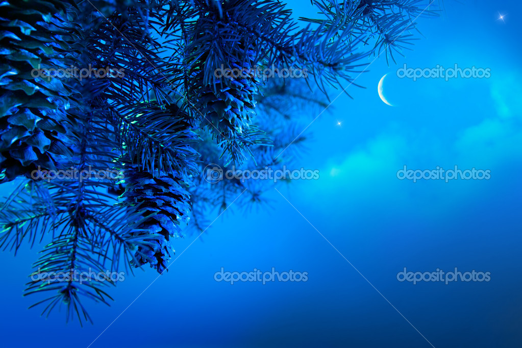 Design a Christmas card with a Christmas tree branch against blue night sky — Stock Photo #7529682
