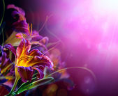 Bir kırmızı bir arka plan birlikte boşaltmak boşluk çiçekler — Stok fotoğraf