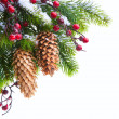 Art Christmas tree sheltered snow — Stock Photo #7615676