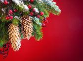 śnieg boże narodzenie drzewo osłonięte sztuki — Zdjęcie stockowe