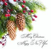 芸術の保護されたクリスマス ツリー雪 — ストック写真