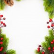 Christmas frame with fir and Holly berry on old paper background — Stock Photo