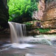 Starved Rock State Park - Illinois — Stock Photo #6803568