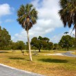 Everglades Campground — Stock Photo #6804236