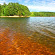 Stock Photo: Clear Waters of Northwoods Wisconsin