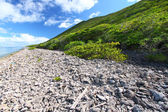 Virgin Islands Coastline — Stock Photo