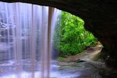 Starved Rock State Park - Illinois — Stock Photo