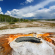 Ear Spring - Yellowstone National Park - Stock Photo