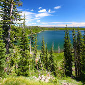 Duck Lake - Yellowstone NP — Stock Photo