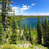 アヒル湖 - イエローストーン国立公園 — ストック写真