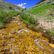 Mountain Stream - Bighorn National Forest — Stock Photo