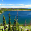 Stock Photo: Duck Lake - Yellowstone NP