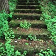 Kilbuck Bluffs Staircase - Illinois - Stock Photo