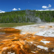 Upper Geyser Basin of Yellowstone — Stock Photo #7907680
