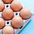 Egg carton -  