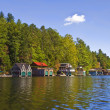 Stock Photo: Beautiful Lake Shorline View