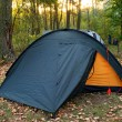Camping tent in forest and rising sun — Stock Photo