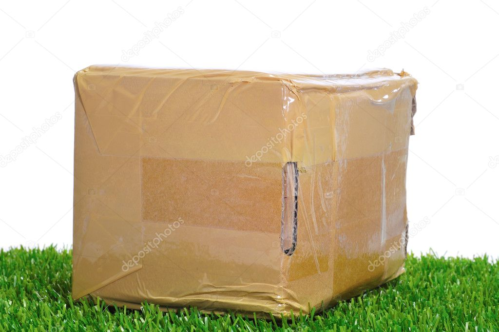 A package on the grass on a white background — Stock Photo #6837694