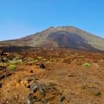 Volcanic landscape in Teide National Park, Tenerife, Canary Isla — Stock Photo #6990669