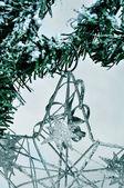 Noel yıldızı — Stok fotoğraf