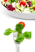 Salad in a fork — Stock Photo