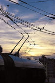 Sunset tramway — Stockfoto