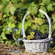 Wine and grapes — Lizenzfreies Foto