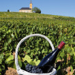 French wine — Stockfoto