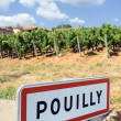 Pouilly village — Stock Photo