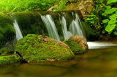 Nice brook — Stockfoto