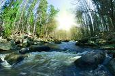 çılgın nehir — Stok fotoğraf