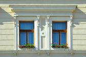 Old windows — Stock Photo