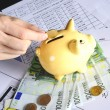 Euro and piggybank — Stock Photo