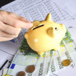 Euro and piggybank — Stock Photo #7252400
