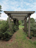 Garden arbour — Stock Photo