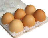 Foto de huevos — Foto de Stock