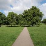Regents Park, London — Stock Photo