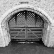 Traitors Gate - Stock Photo