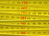 Ruler picture — Stockfoto