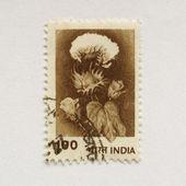 Selo indiano — Foto Stock