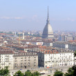 Turin, Italy — Stock Photo #7327402
