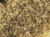 Straw picture — Stockfoto