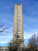 Trellick タワー、ロンドン — ストック写真
