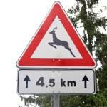 Wildlife danger sign — Stock Photo